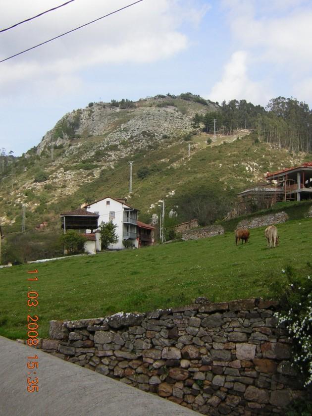 Rural Basora